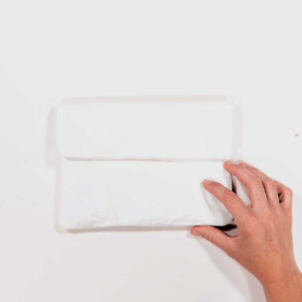 Wren PaperSleeves Mini White Frontwithsinglehand web ready