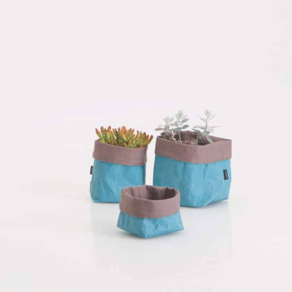 Wren Paper Tubs Teal set styled Lowres